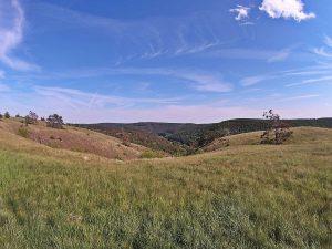Údolí řeky Jihlavy